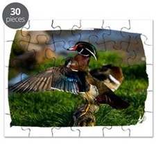 (16) Wood Duck Wing Puzzle