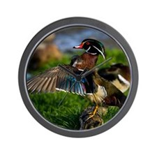 (12) Wood Duck Wing Wall Clock