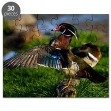 (12) Wood Duck Wing Puzzle