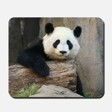 panda3 Mousepad