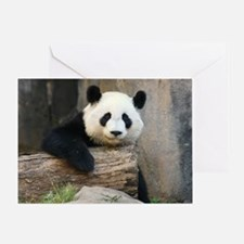 panda3 Greeting Card