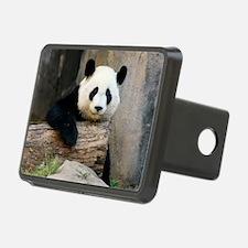 panda3 Rectangular Hitch Cover