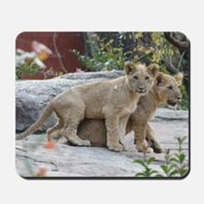 lion cubs Mousepad