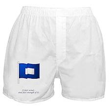 bluepeter[5x8_journal] Boxer Shorts