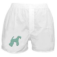 Paisley Kerry Boxer Shorts