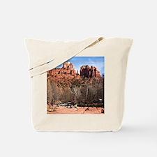 2-CathR1covsm Tote Bag
