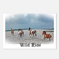 wild_ride Postcards (Package of 8)