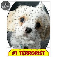 Terrorist Puzzle
