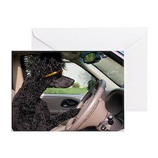 bella drive cp Greeting Card