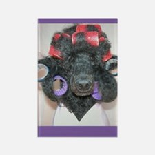 Bella curlers cp Rectangle Magnet