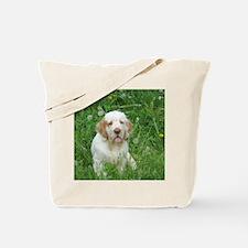 2-DSCN0044finley Tote Bag