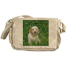 2-DSCN0044finley Messenger Bag