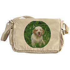 DSCN0044ffff Messenger Bag