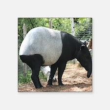"Tapir-MP Square Sticker 3"" x 3"""