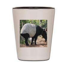 Tapir-MP Shot Glass