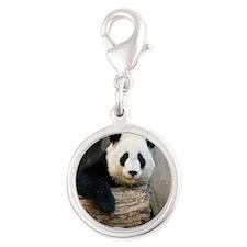 Panda2-MP Silver Round Charm