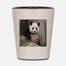 Panda2-MP Shot Glass