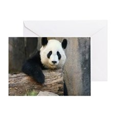Panda2-MP Greeting Card