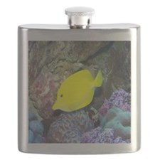 Fish2-MP Flask