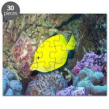 Fish2-MP Puzzle
