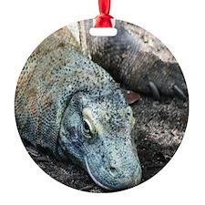 komodo-MP Ornament