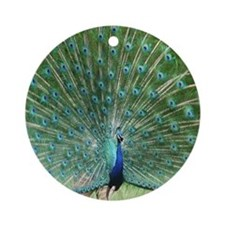 peacock-MP Round Ornament