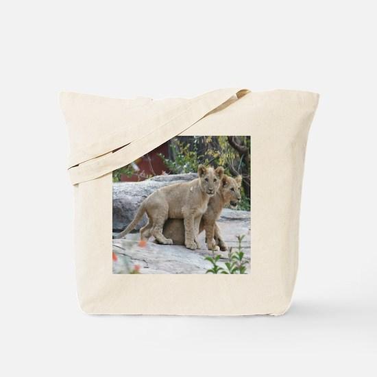 lion cubs-MP Tote Bag