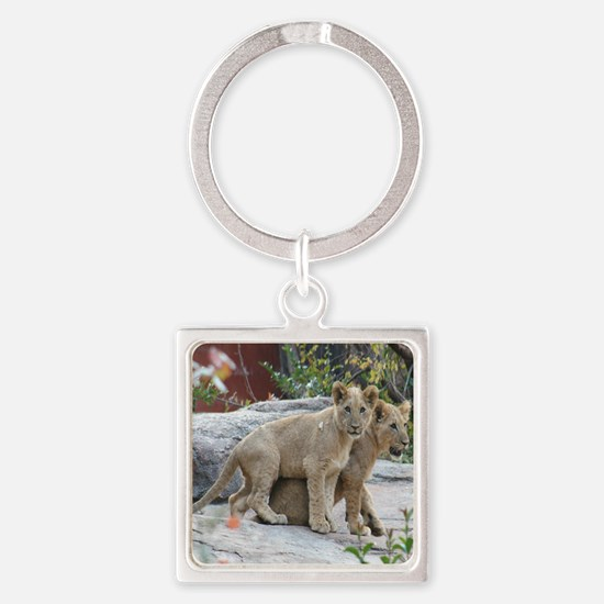lion cubs-MP Square Keychain