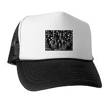 Helaine's Coots Trucker Hat