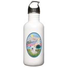 Angel Star - American  Sports Water Bottle