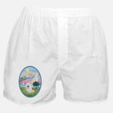 Angel Star - American Eskimo Dog Boxer Shorts