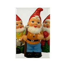 2-Gnome-Important Friends Rectangle Magnet