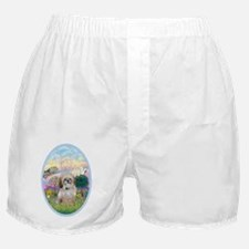 OvOrn-Cloud Angel - Shih Tzu (P) Boxer Shorts