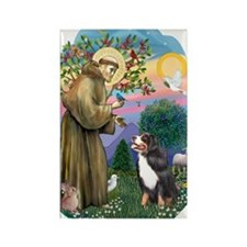St Francis 2B-Bernese Mountain Do Rectangle Magnet