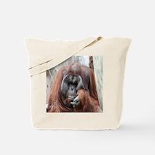 orang1-Cstr Tote Bag