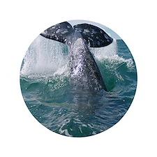 """Copy of 1st close up whale!-Cstr 3.5"""" Button"""