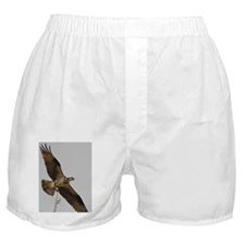 6x4_pcard 2 Boxer Shorts