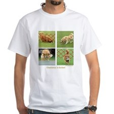 Golden Retriever Obedience Shirt