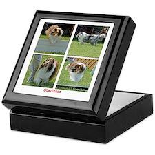 Shetland Sheepdog Obedience Keepsake Box