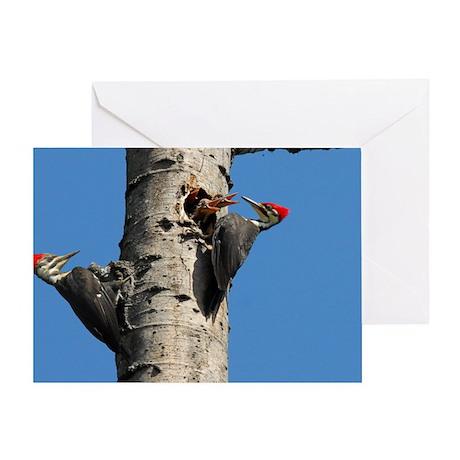 14x10_print 2 Greeting Card
