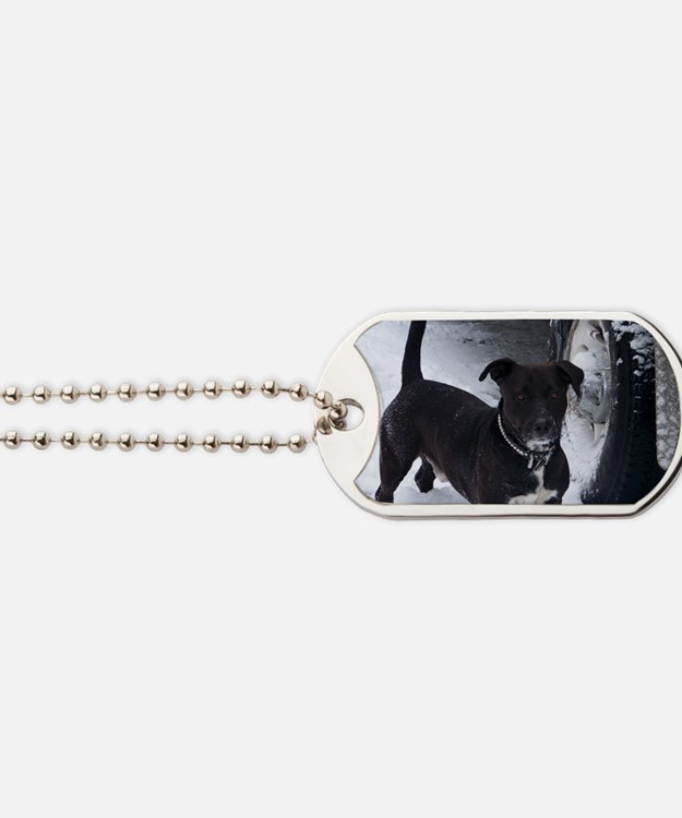 shorty Dog Tags
