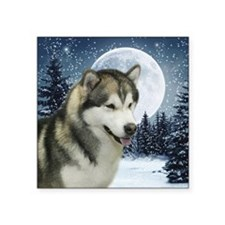 "WinterMalamuteTile Square Sticker 3"" x 3"""