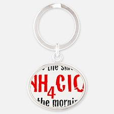 nh4cio_10x10_r_200dpi Oval Keychain