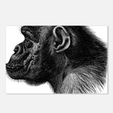 Chimp Profile Postcards (Package of 8)