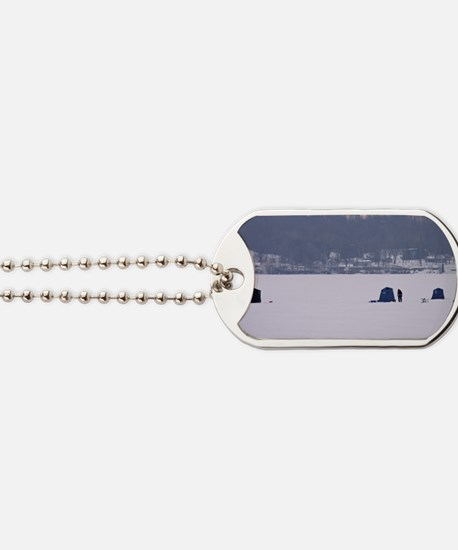 twenty-first download 243edeight Dog Tags