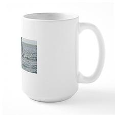 3-IMG_0283 Mug