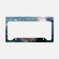 3-IMG_1594 License Plate Holder