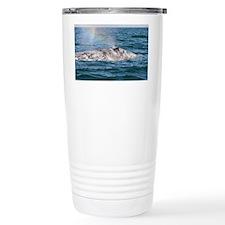 3-IMG_3491 Travel Mug