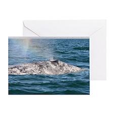 3-IMG_3491 Greeting Card