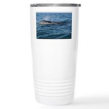 2-IMG_2663 Travel Mug